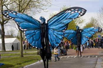 Magische Vlinders