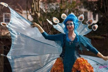 Blue Fairy Elf
