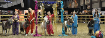 Arabian Pony World