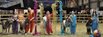 Arabian Pony World