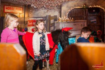 Sinterklaas Pony's